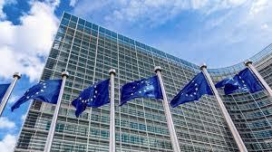 """prof. Vasile Neacșa – """"Uniunea Europeană propune """"Generaţia viitoare UE"""". Cine plăteşte în realitate?"""""""